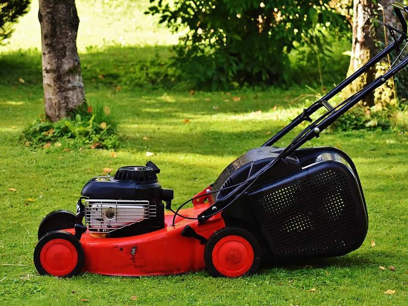 tondeuse électrique - cherche réparateur tondeuse à gazon - matériel de jardinage professionnel